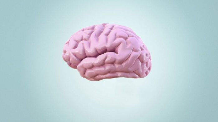 Illustrated brain in pink against blue background